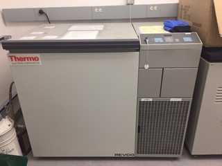 Thermo Fisher REVCO, Model #ULT790-5-D33, chest freezer