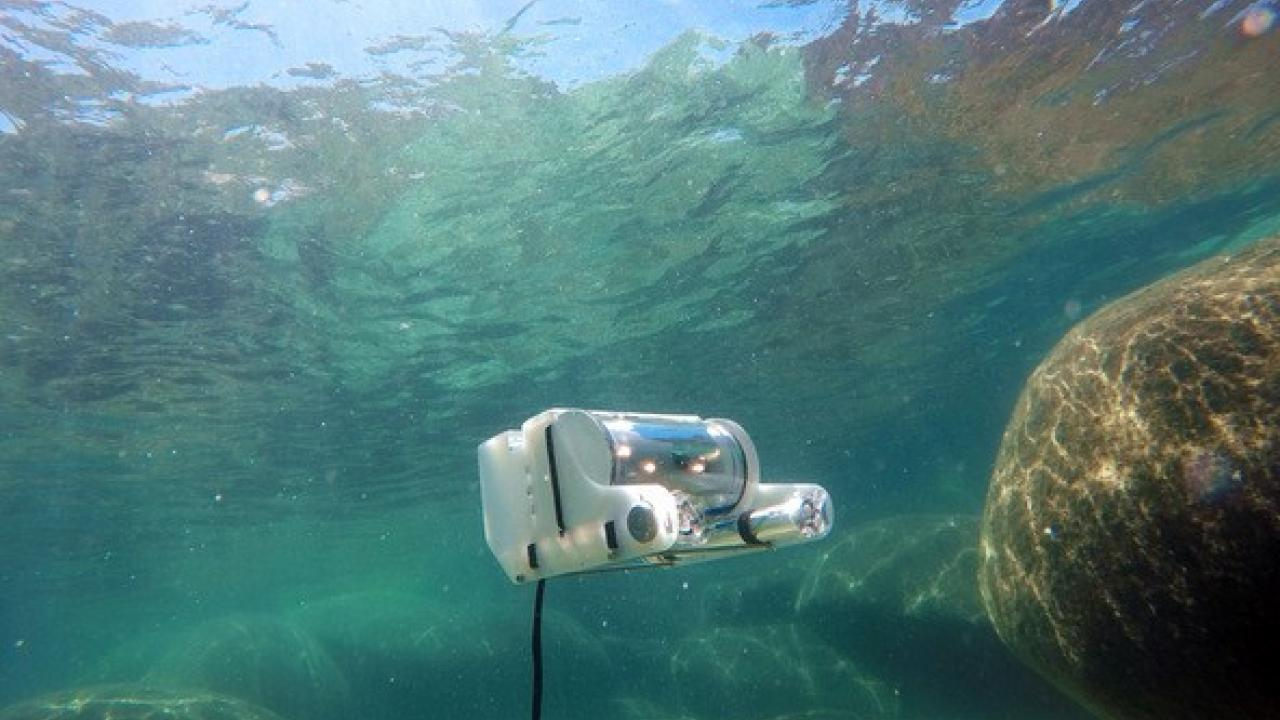 Underwater research in action
