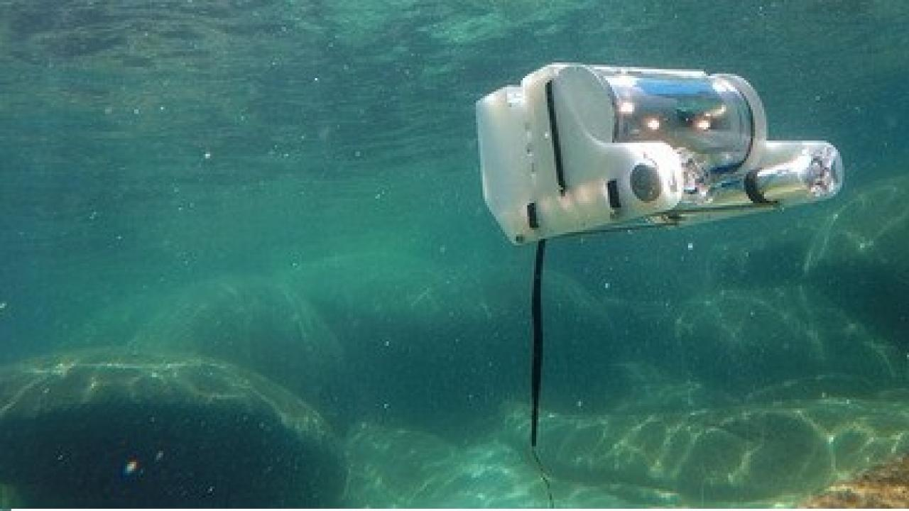 ROV in action